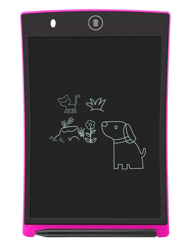 Boogie Board (Writing Tablet)